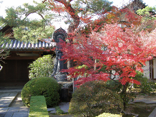 Kyoto Cycling Information and Touring